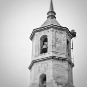 Storch im Turm von Nájera