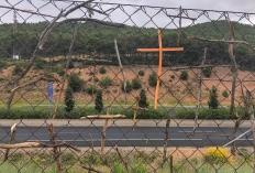 Holzkreuze am Straßenrand