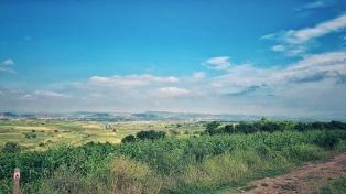 Blick in die Rioja