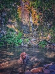 Wasserfall mit Uro